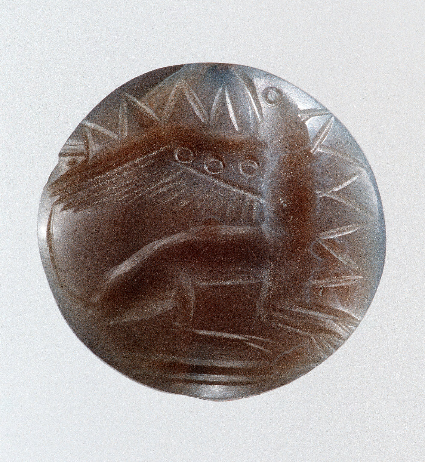 Lentoid seal with a griffin