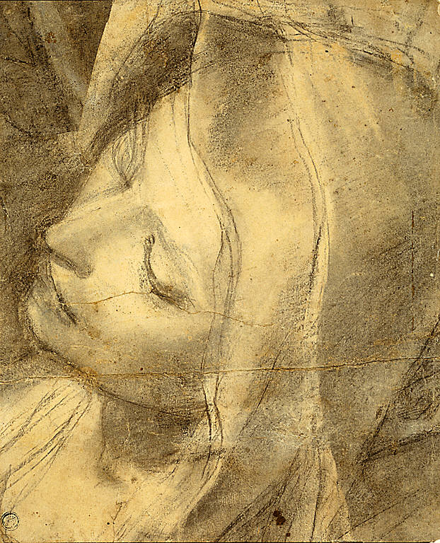 [Head of the Swooning Virgin: Study for the Deposition, Study for the Head of the Virgin]