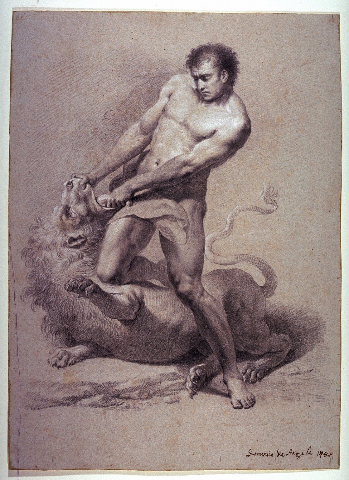 Hercules Struggling with the Lion
