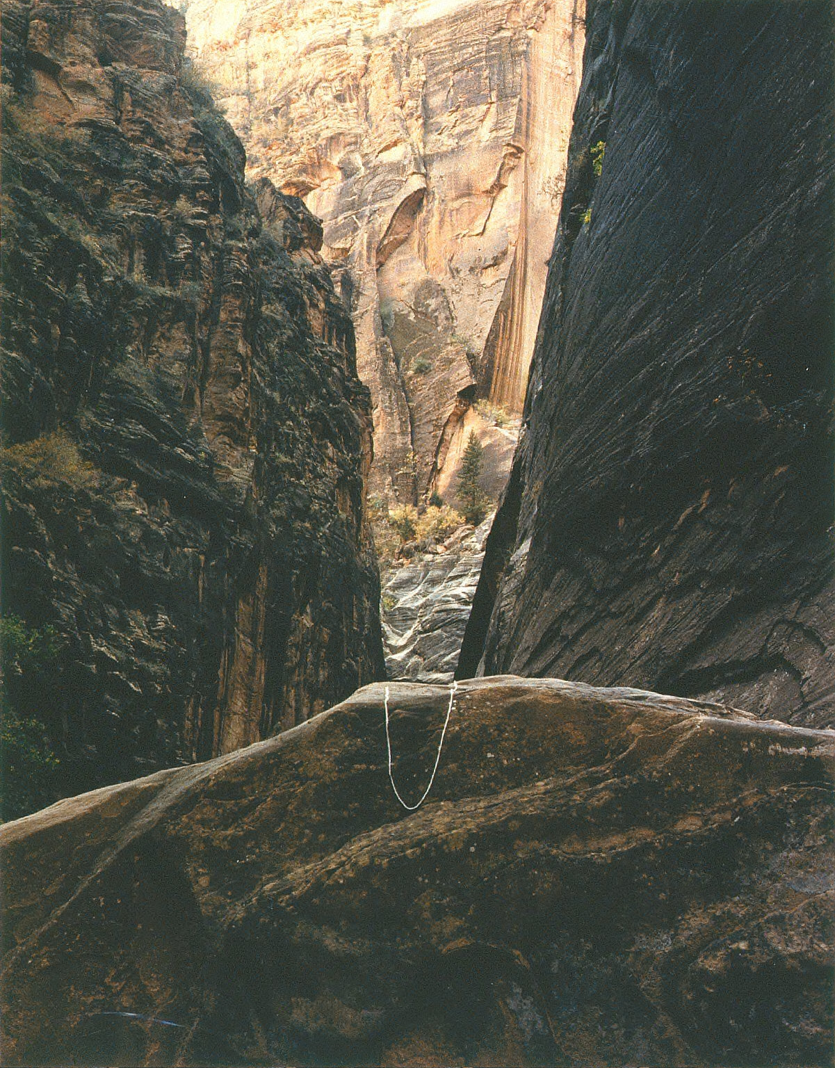 Canyon Point, Zion National Park, Utah